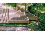 Charlton Mackrell School: Garden Detail