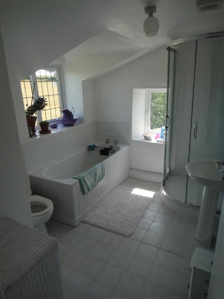 Dormer bathroom layout 28 images shed dormer addition for Bathroom dormer design